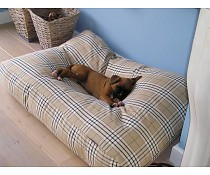 dogs-companionr-hondenbed-country-field