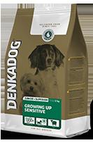 denkadog-superior-care-growing-up-sensitive